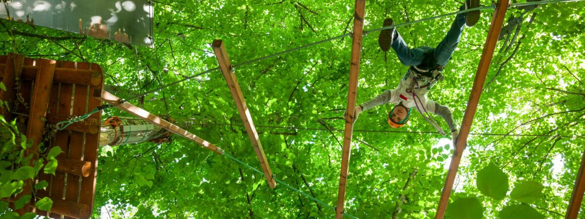 Klettern im Fun Forest Kandel